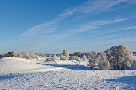 Snowy winter landscape with hoarfrost on the tree photo