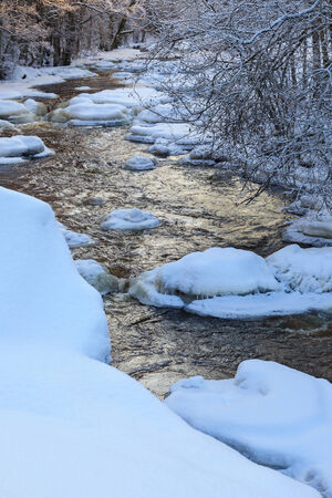 wintry: Flowing river in wintry forest