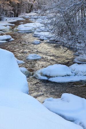 flowing river: R�o que fluye en el bosque invernal Foto de archivo