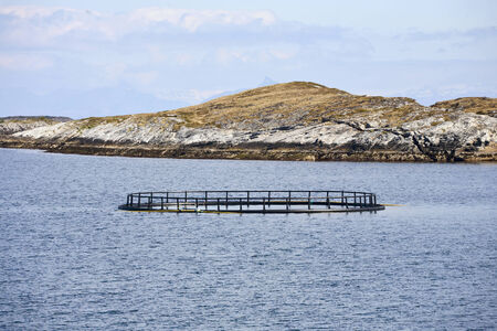 fish farming: Fish farming with cage systems Stock Photo