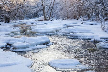 flowing river: R�o que fluye en el bosque de invierno Foto de archivo