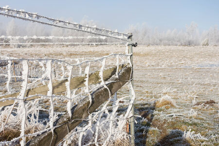 non cultivated land: Chain link fencing with hoarfrost