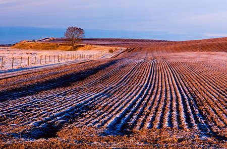 loess: Ploughed farmland at winter time