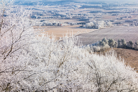 non cultivated land: View of a frozen countryside Stock Photo