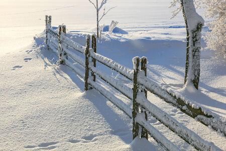 scenic  landscape: Snowy fence in winter garden