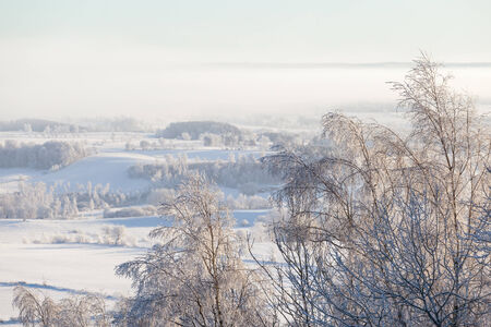 wintery: Wintery rural landscape with fog in valley