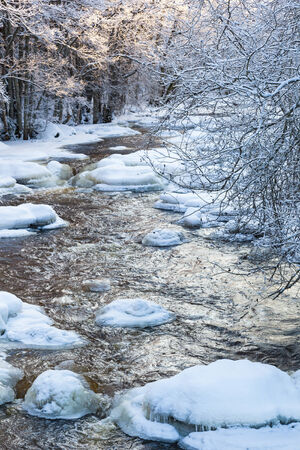 Flowing river in wintry forest