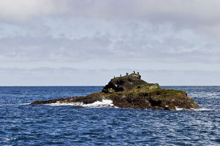 islet: Cormorants on the islet at the sea Stock Photo