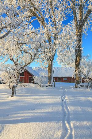 snow landscape: Path through the garden to the barn Stock Photo