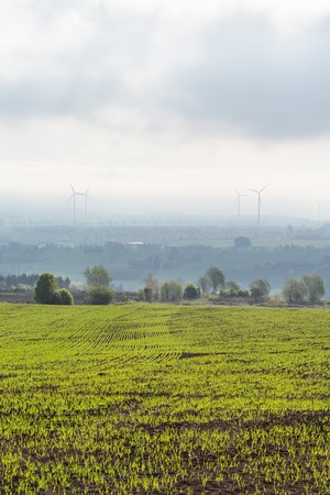 non cultivated: New sown field with fog in valley Stock Photo