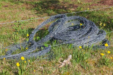 Rolls of barbed wire on the meadow photo