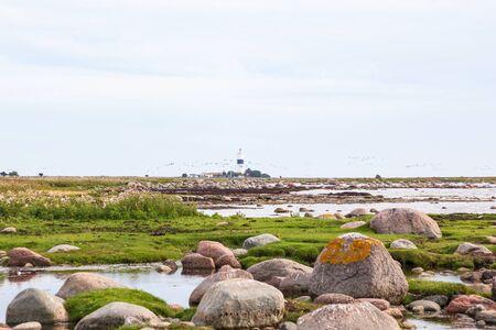 oland: Lighthouse on the coast at oland in Sweden