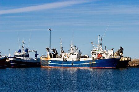 fishing fleet: Fishing fleet in a harbour