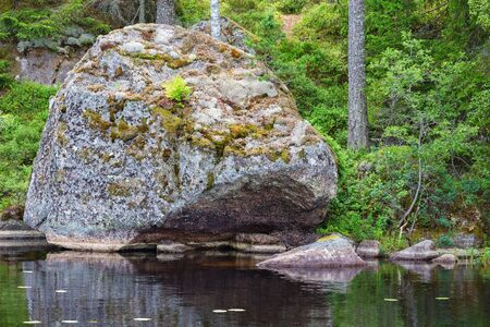 erratic: Glacial erratic rock located on a beach in the lake