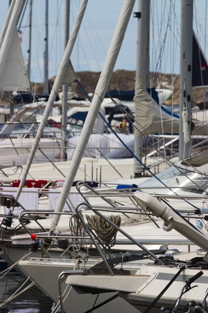 jib: Pleasure boats in the marina