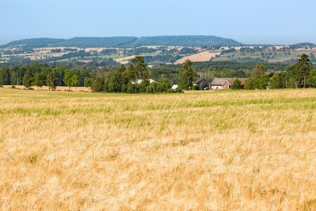 contryside: View of rural landscapes with ripe cornfields Stock Photo