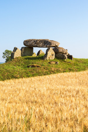 megalith: Megalith grave on a hill in the countryside