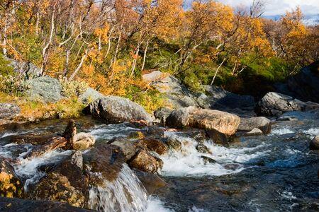 color in: Creek y el otoño de color en el paisaje