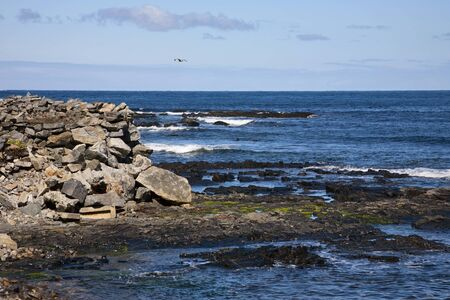 waterscapes: Rocky coast and sea waves