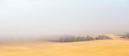beaty: Misty over the rural landscape