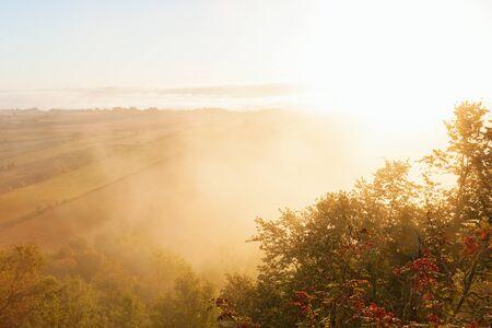 campagna: Nebbia Sunriceand a paesaggio di campagna