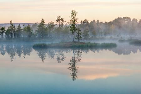 호수에 아침 안개 스톡 콘텐츠
