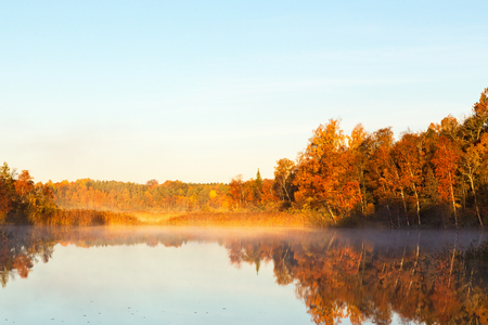 fall beauty: View of a lake with mist at dawn in the autumn