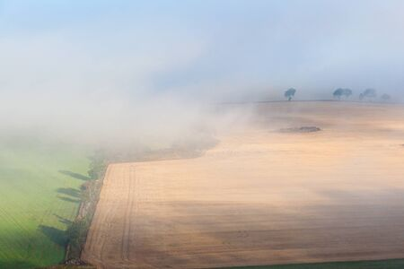 beaty: Foggy morning over the countryside