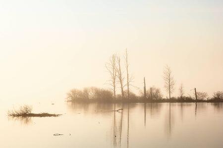 treetrunk: Sunrise and fog at the lake