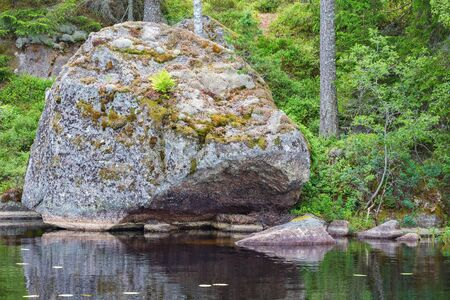 erratic: Glacial erratic rock located on a beach