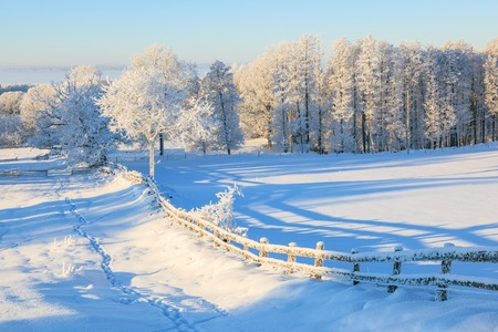 pasture fence: Snowy fence in winter landscape Stock Photo
