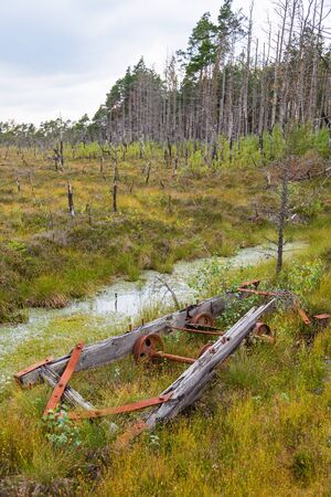 bog: Remains of a wagon on the bog Stock Photo
