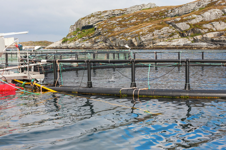 pisciculture: Fish farming in cages at the coast Stock Photo