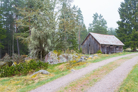 woodshed: Old Shed at the gravel road