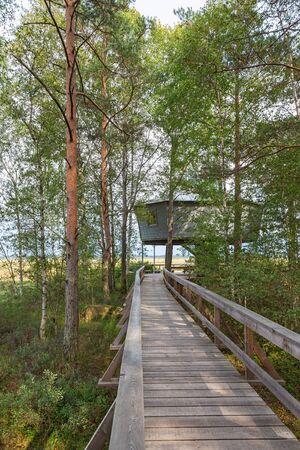 bird watching: Footbridge the bird watching tower on the Store Mosse National Park in Sweden