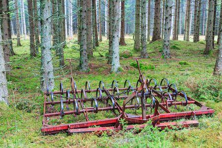 harrow: Old Harrow is left in the woods