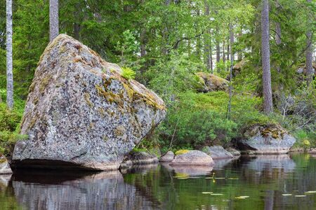 erratic: Glacial erratic rock located on a beach at a forest Stock Photo