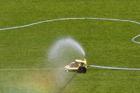 sprinkle system: Irrigation sprinkler on a grass lawn