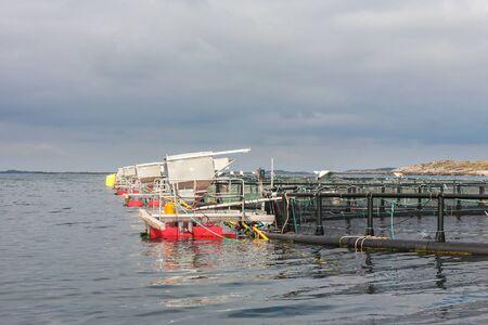pisciculture: Fish farming in cages at sea