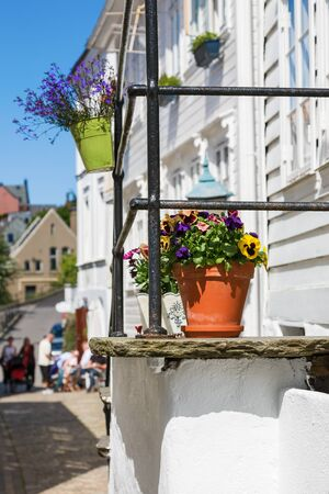 urban idyll: Flower pots on the stairs in the alley