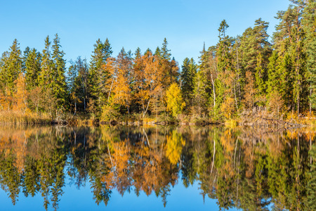 autumn color: Lake in the forest with water reflections