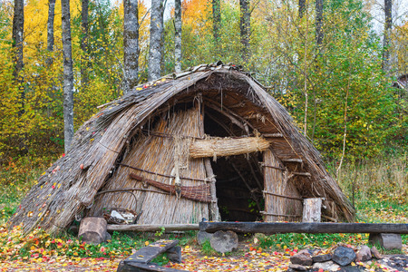 edad de piedra: Stone Age hut of reeds in the forest