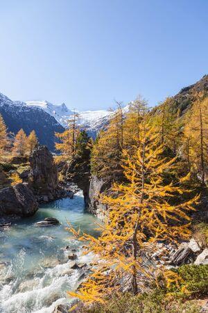 River in alp landscape at autumn