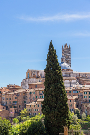 View of the city of Siena to the Duomo di Siena