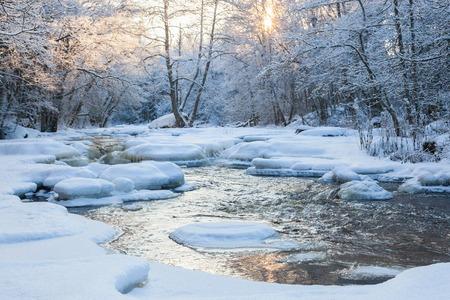 雪に覆われた森の中に流れる川 写真素材