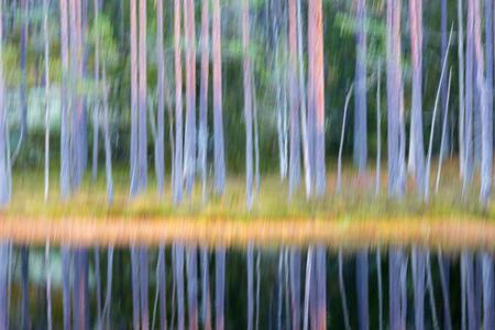 Lac avec des reflets d'arbres dans l'eau en flou