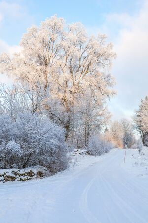 Winter road in the countryside with snow
