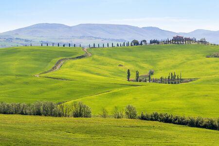 Green fields in an Italian rural landscape Stock Photo