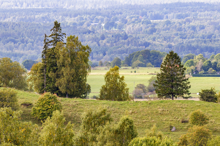 arboleda: View of rolling fields and forests Foto de archivo