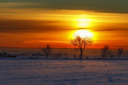 Sunrise view in winter landscape with trees and wind turbines in silhouette